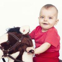 Первая лошадка! :: Светлана