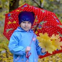 Осень в ярких красках! :: Екатерина П.