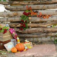 Осенние изобилие :: Людмила Лосева