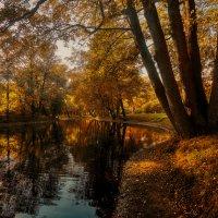 Осень, красавица рыжая.... :: Болеслав (Boleslav)