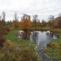 Осень в деревне :: El Кондукова