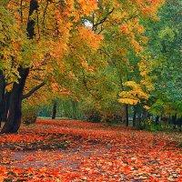 Осенняя пора :: *ALISA* .