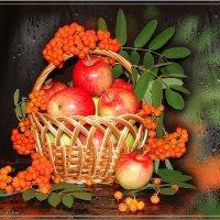 Запах Осени :: °•●Елена●•° Аникина♀