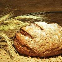 хлеб из пшеницы :: Влад