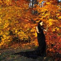 В цвете осени :: Мария Панькина