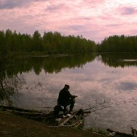 утро на рыбалке... :: александр дмитриев
