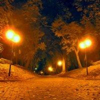Золотая осень :: Олег ...