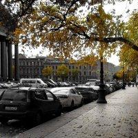 Осень :: AleksSPb