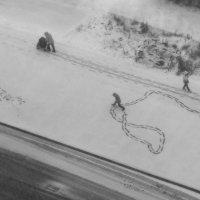 Поймал первый снег :: Vilyma ---