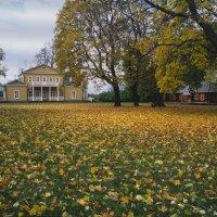 Тарханы. Осень. :: Вячеслав