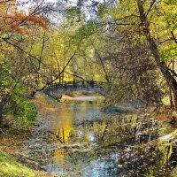 Осень в старинном парке... :: Евгений Яхим