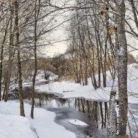 Река Московская ряса :: Оксана Н.