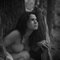 Беглянка! :: Натали Пам