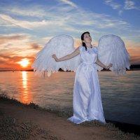 Ангел на закате :: Виктория