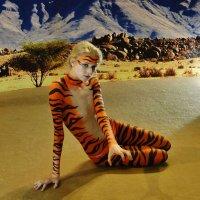 Девушка - тигрица :: Валерий Антипов