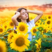 В желтом поле :: Любовь Дашевская