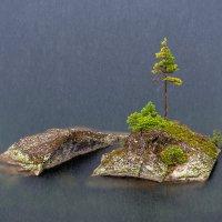 Перламутровый ливень :: Ник Васильев