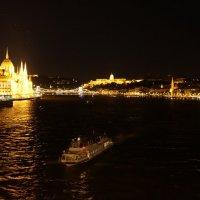 Звёздное небо над Дунаем .... :: Алёна Савина