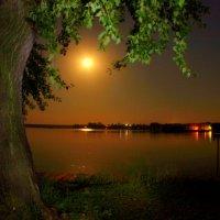 При свете полной Луны... :: Нэля Лысенко