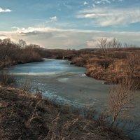 Ещё ледок на речке деревенской ... :: Евгений Хвальчев