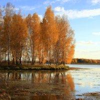 Осенний островок :: Нэля Лысенко