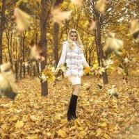 Листопад :: Ольга Живаева