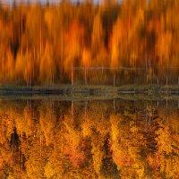 Осенняя палитра :: Татьяна Афиногенова