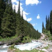 В горах Киргизии :: alers faza 53