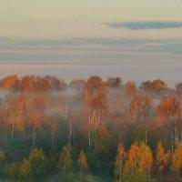 Осень из моего окошка. :: Виктор Осипчук