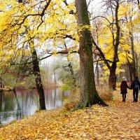 Осенними тропами... :: Ирина Румянцева