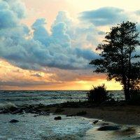 Закат на Финском заливе :: Олег Гаврилов