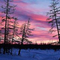 Рассвет в Арктике :: Александр Велигура