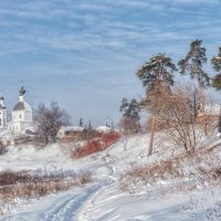 Морозное утро :: Василий Фроленок