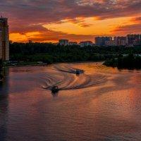 Катера и утки на Москва-реке. :: Владимир Безбородов