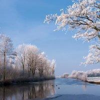 Зимняя река :: Alex ARt