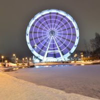 Дымковская Радость зимой :: Iris