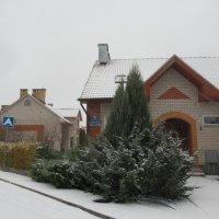 Зимний дворик :: Татьяна Гусева
