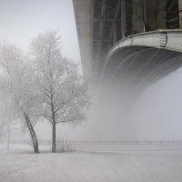 Зима в городе :: natali Голенкова