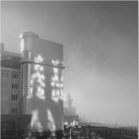 Тени,солнце и туман. :: Юрий Ефимов