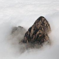 Желтая гора. :: Сергей Изотов