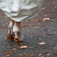 Свадебные листья :: Анатолий Тягунов