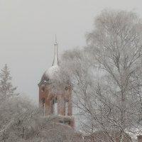 Волшебница Зима :: Евгения Коркунова