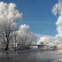 Красавица зима :: Роман Савоцкий