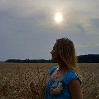 Ночь в поле :: Александр Сансар