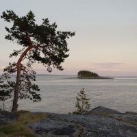 Белая ночь на Белом море :: Татьяна Сапрыкина