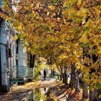 Золотая осень – дивная пора! :: Светлана Артюшина