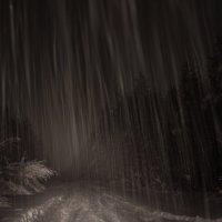 Снегопад :: Денис Атрушкевич