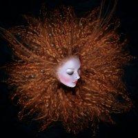 солнце :: Olga Gerdo