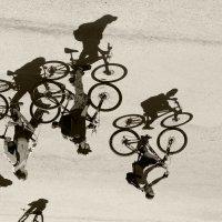 Прогулка на велосипедах :: Оксана Грищенко
