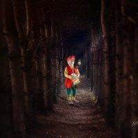 В сказочном лесу :: Леся Схоменко